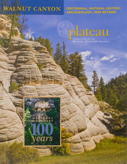 Plateau: Walnut Canyon