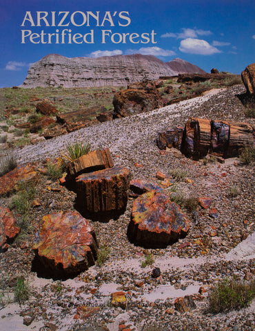 Plateau: Arizona's Petrified Forest