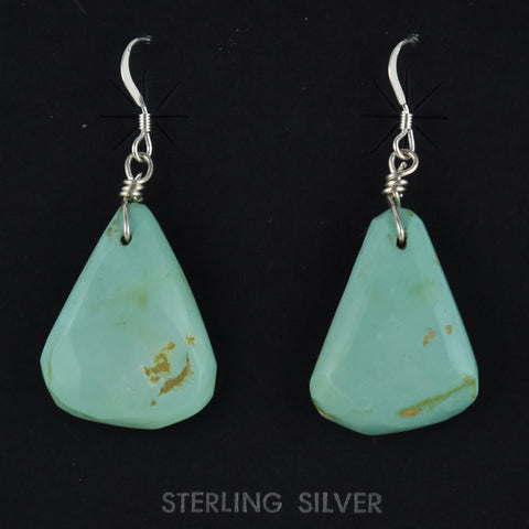 Turquoise Tab Earrings