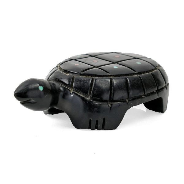 Jet Turtle Fetish