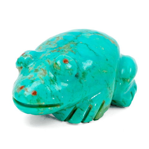 Turquoise Frog by Pete and Dinah Gasper