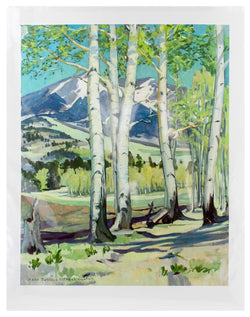 Hart Prairie Aspens Giclee by Mary-Russell Ferrell Colton
