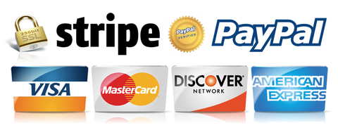 secured paiement gateway visa mastercard paypal safe paiment