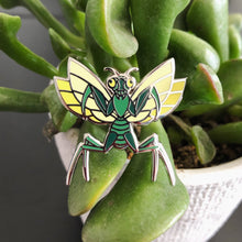 Mantis Pin