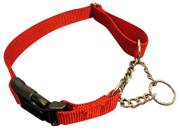 Half Chain with QUICK RELEASE Martingale Collars - Choose Color & Size - 10 PACKS