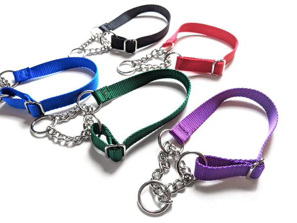 Half Chain Martingale Collars Medium 5 PACK Assorted Colors