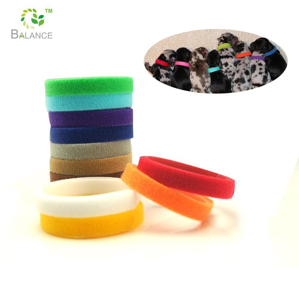 Puppy ID Collar Bands Mixed Colors 12 PACK