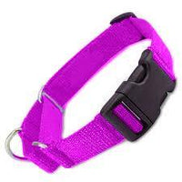 ALL Nylon Martingale Dog Collars w/ QUICK RELEASE - Choose Color & Size - 10 PACKS