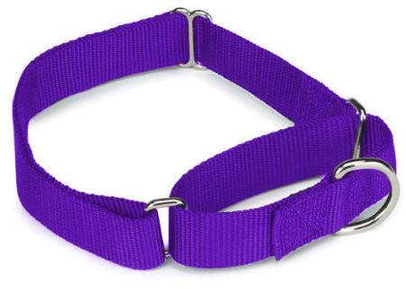 GCHS3  *All Nylon Martingale Collars Large Purple 10 Pack