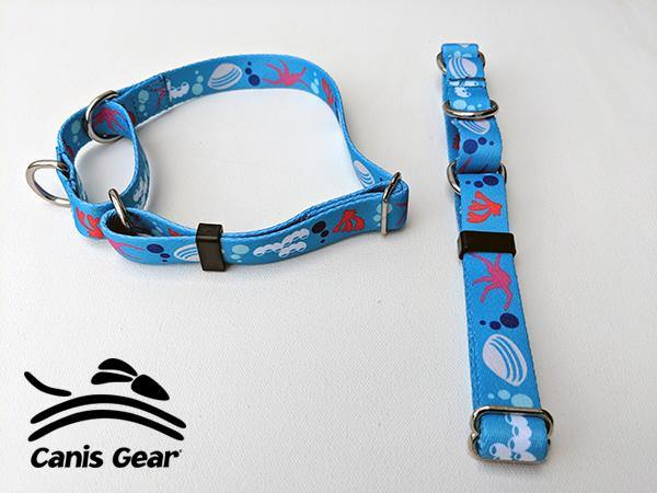 "Colorful Ocean MEDIUM Martingale 3/4"" 10 PACK"