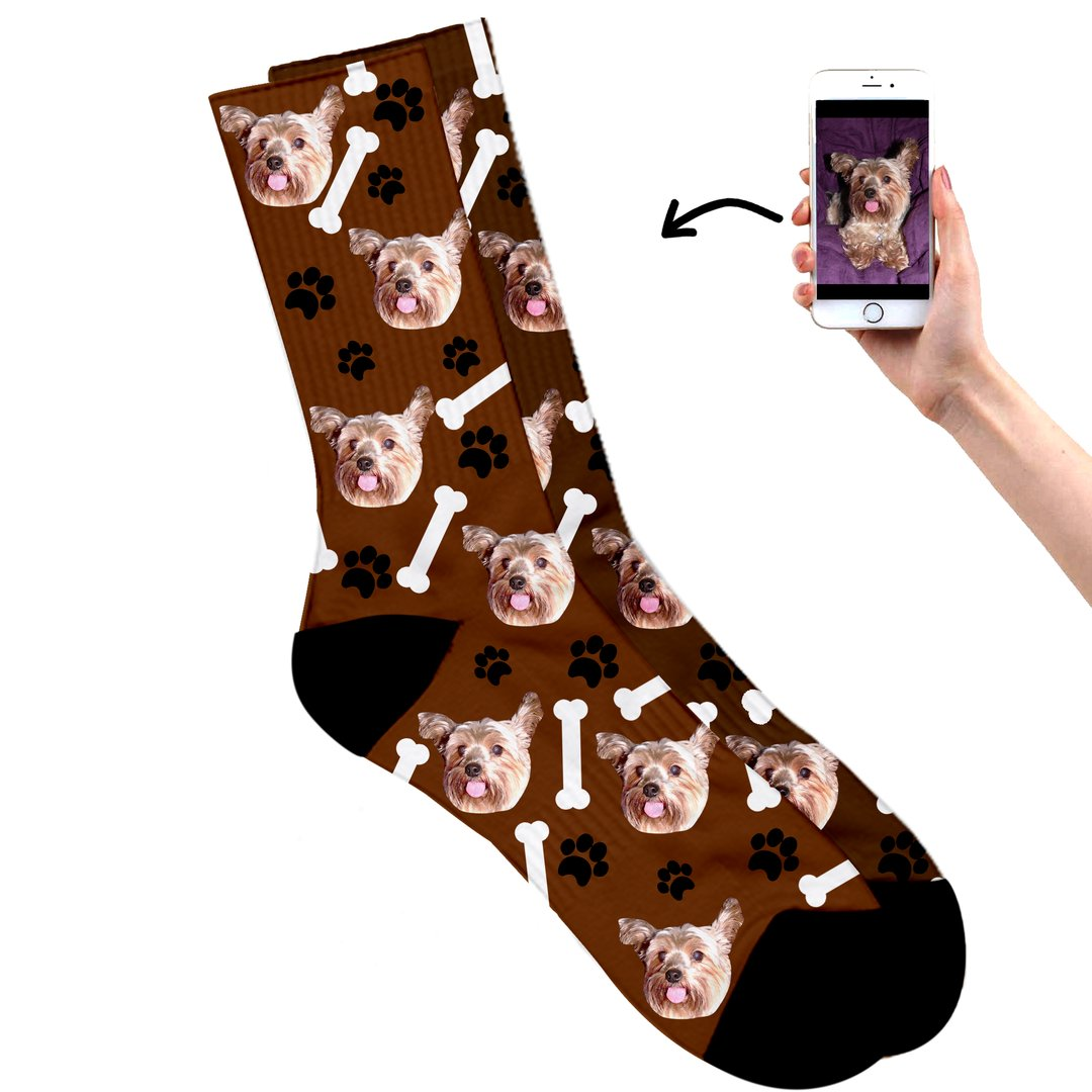 Dog on socks brown
