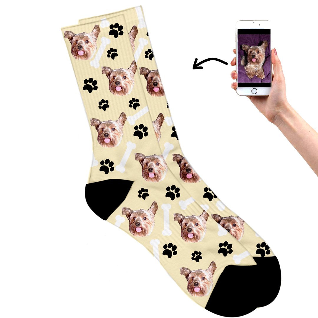 Dog on socks cream