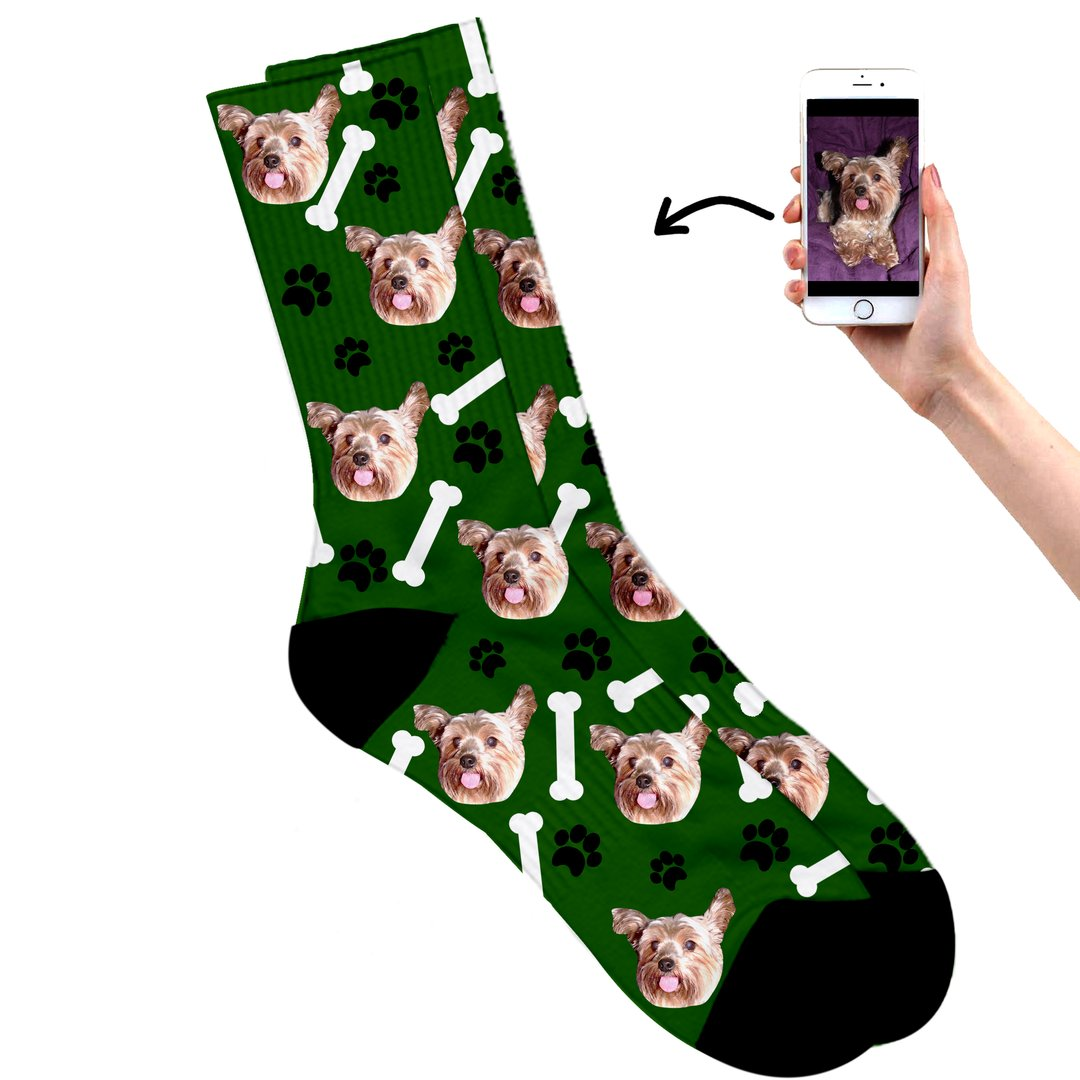 Dog on socks green