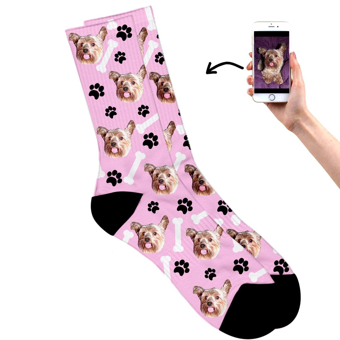 Dog on socks pink