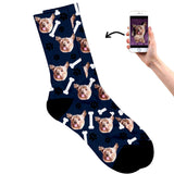 Dog on socks navy