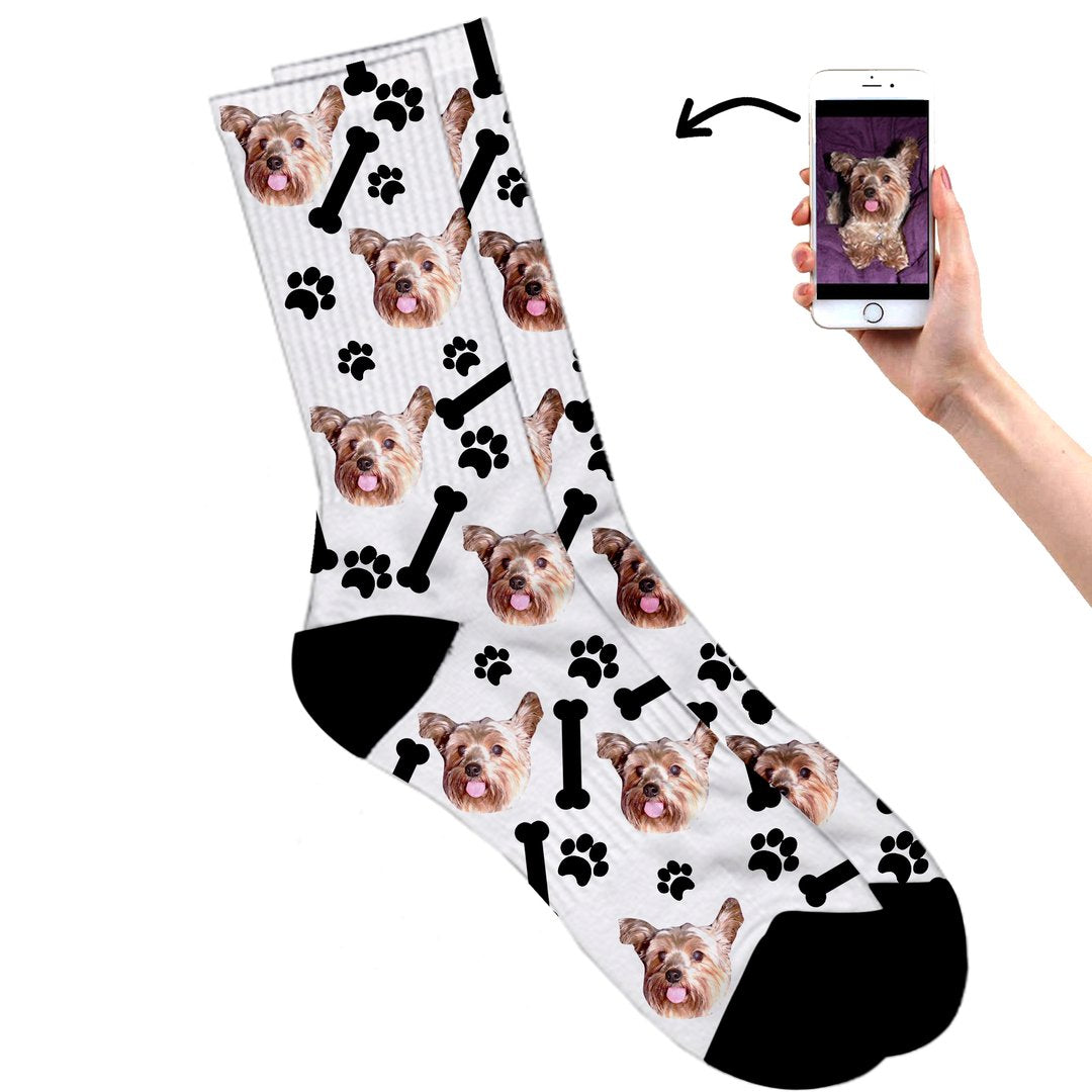 Dog on socks white