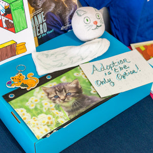 Buddy Box #2 - All About Kittens