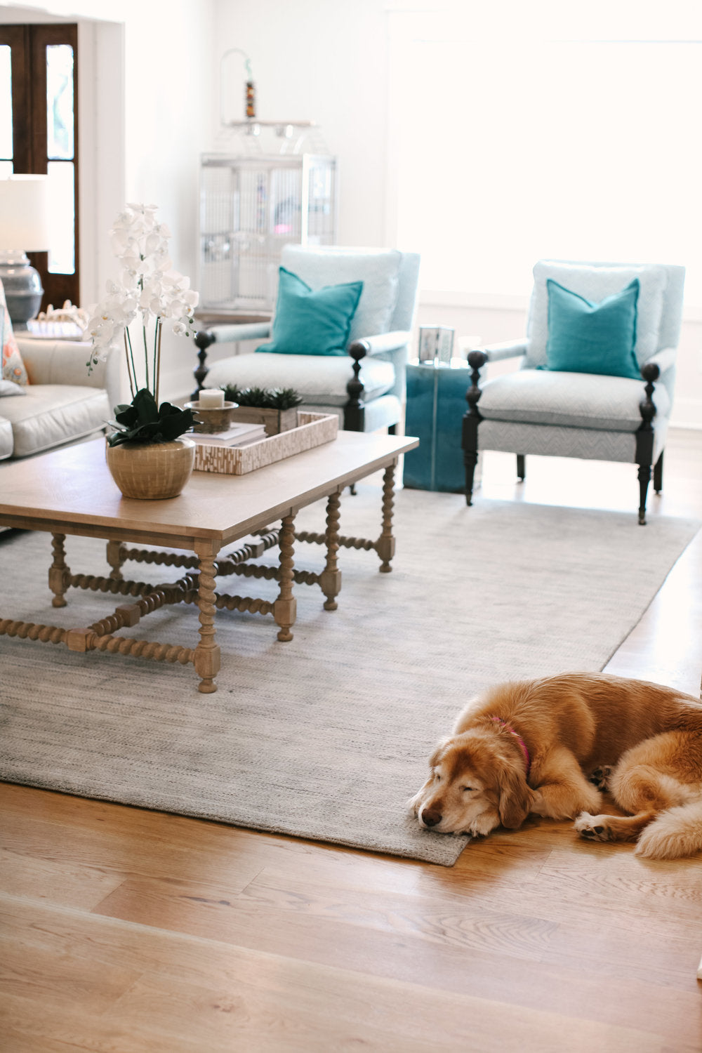 Collection of Cool Living Room Rugs 9x12 Central that you must See @house2homegoods.net