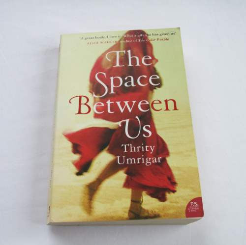 The Space Between Us by Thrity Umrigar. A paperback contemporary novel.