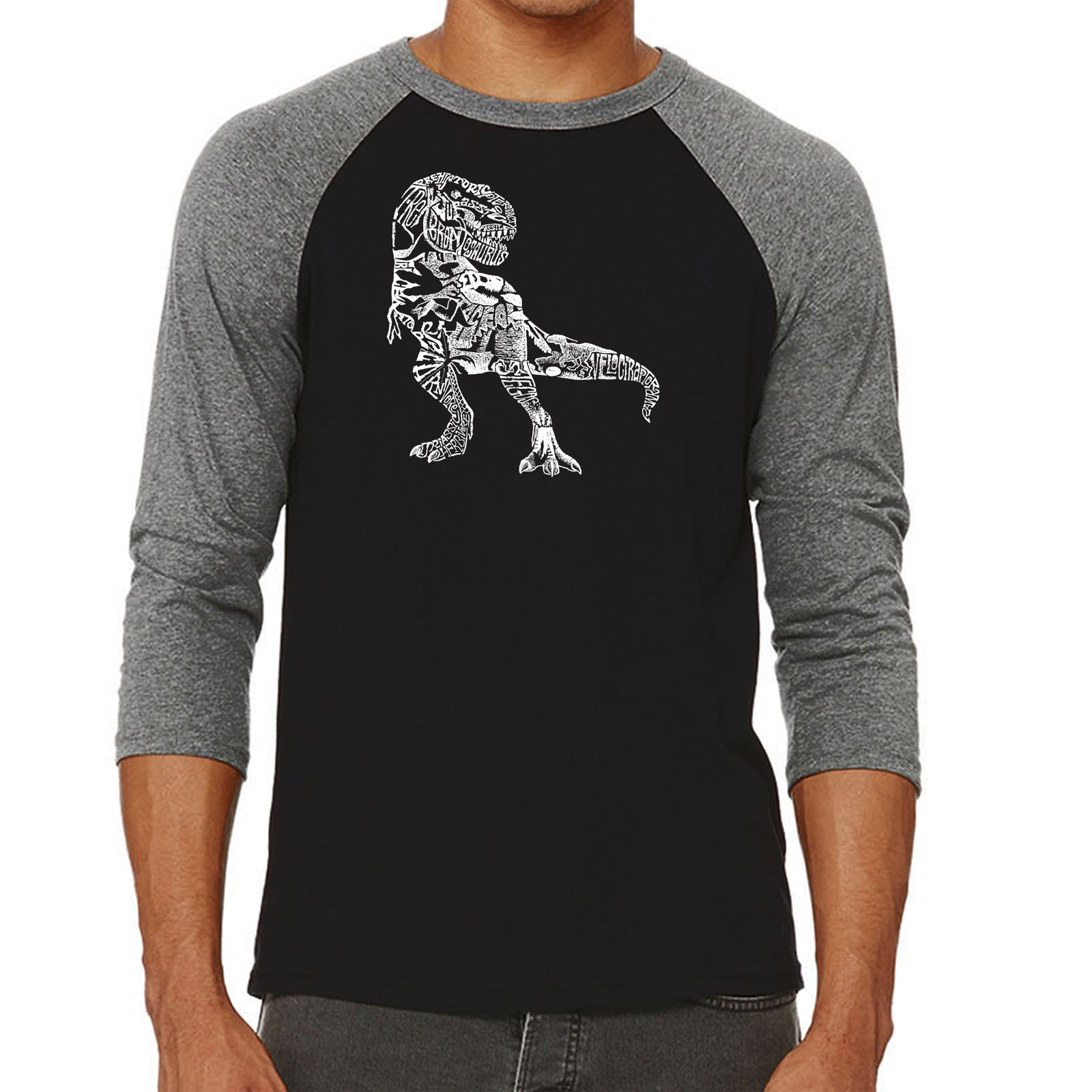 Men's Raglan Baseball Word Art T-shirt - Dino Pics