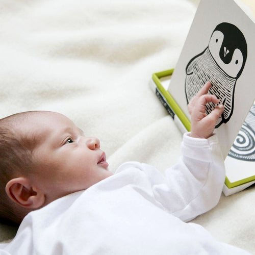 Wee Gallery Baby art cards Black & White - Baby Kijkkaarten