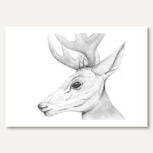 'Deer' by Alex Golding