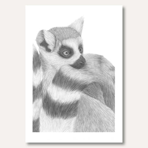 'The Lemur' framed original by Gabriela Cox