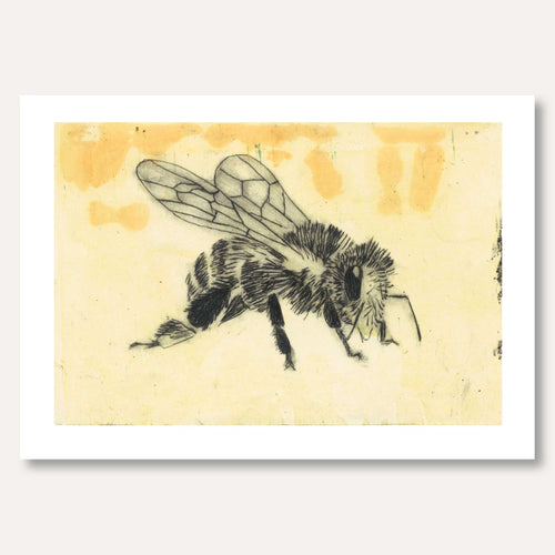 'Honey Bee' by Skye Calder