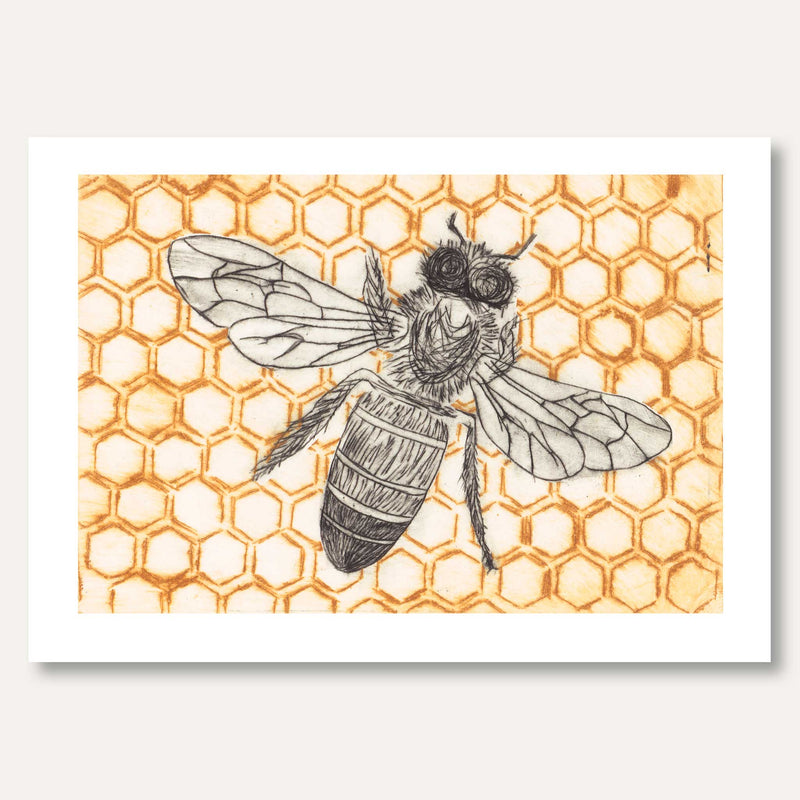'Honeybee Comb' framed original by Skye Calder
