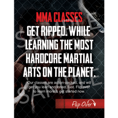 Mixed Martial Arts 3
