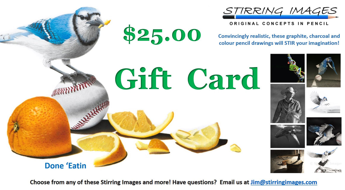 Stirring Images VM Gift Card
