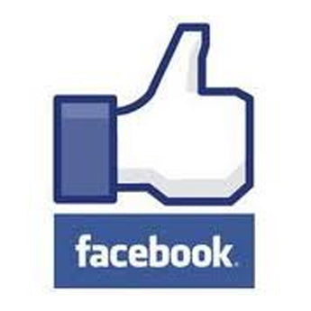 Facebook Auto Future Post Likes - Monthly Subscription - SocialFamous.Me