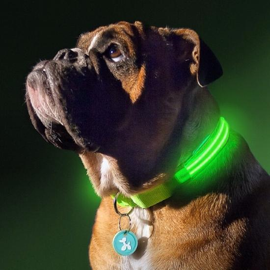 PREMIUM GLOW-IN-THE-DARK LED SAFETY RHOMBUS PATTERN COLLAR