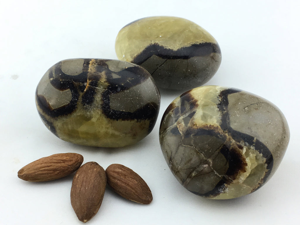 Septarian: Pebble