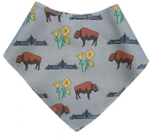Buffalo Poppies Dog Scarf