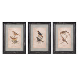 Woodland Bird Wall Decor Ast 3 - Artifice Store