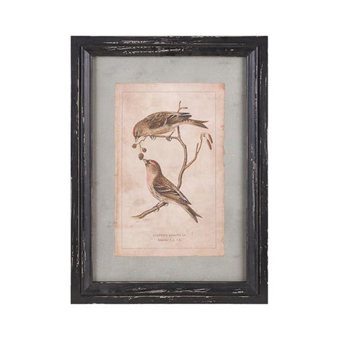 Woodland Bird Wall Decor Ast 3