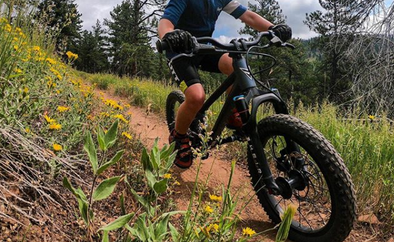 Buying the Right Bike For Your Little Shredder