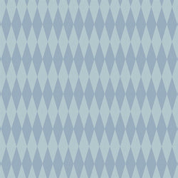 Argyle Photo Backdrop - Baby Boy Blue