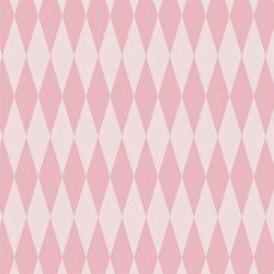 Argyle Photo Backdrop - Baby Girl Pink Backdrops Rachael Mosley