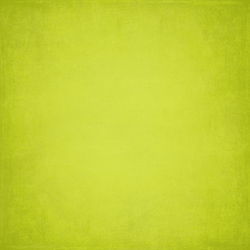 Bella Textured Lime Photo Backdrop - Lime Punch