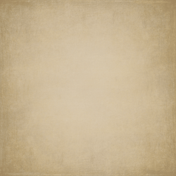 Bella Textured Photo Backdrop -  Warm Sand