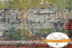 Brick Photo Backdrop - Big Circle Horizontal