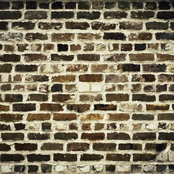 Brick Photo Backdrop - Butterscotch