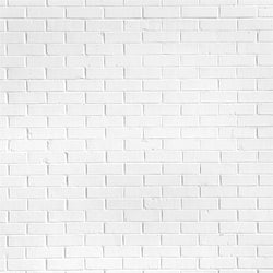Brick Photo Backdrop - Cloud White