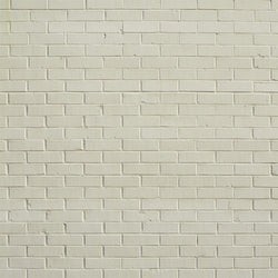 Brick Photo Backdrop - Creamsicle Backdrops,Floordrops Loran Hygema