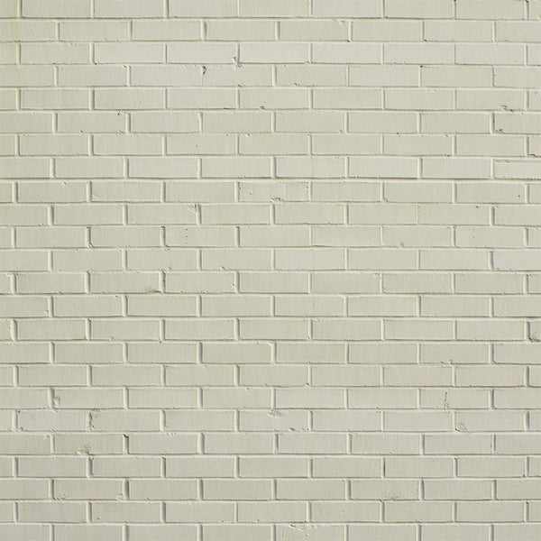 Brick Photo Backdrop - Creamsicle