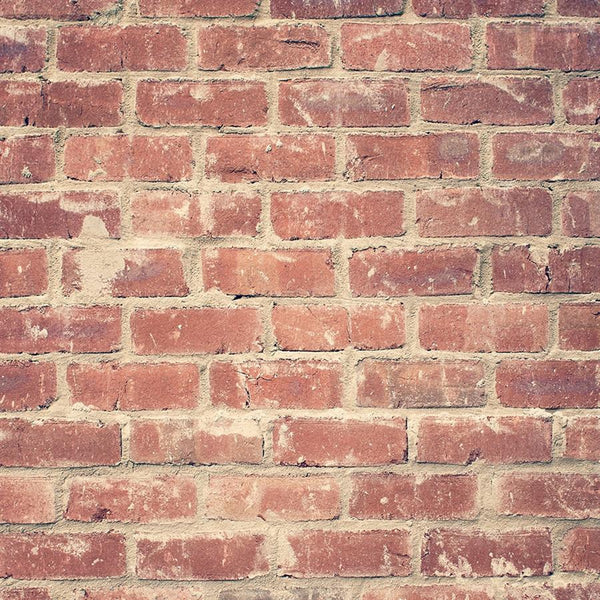 Brick Photo Backdrop - Dreamy Red