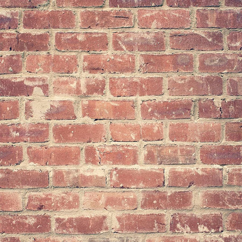 Brick Photo Backdrop - Dreamy Red Backdrops,Floordrops Loran Hygema
