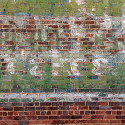 Brick Photo Backdrop - Graffiti Paint